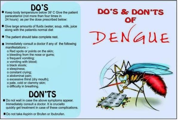 Understanding Dengue fever in kids! – Kalp